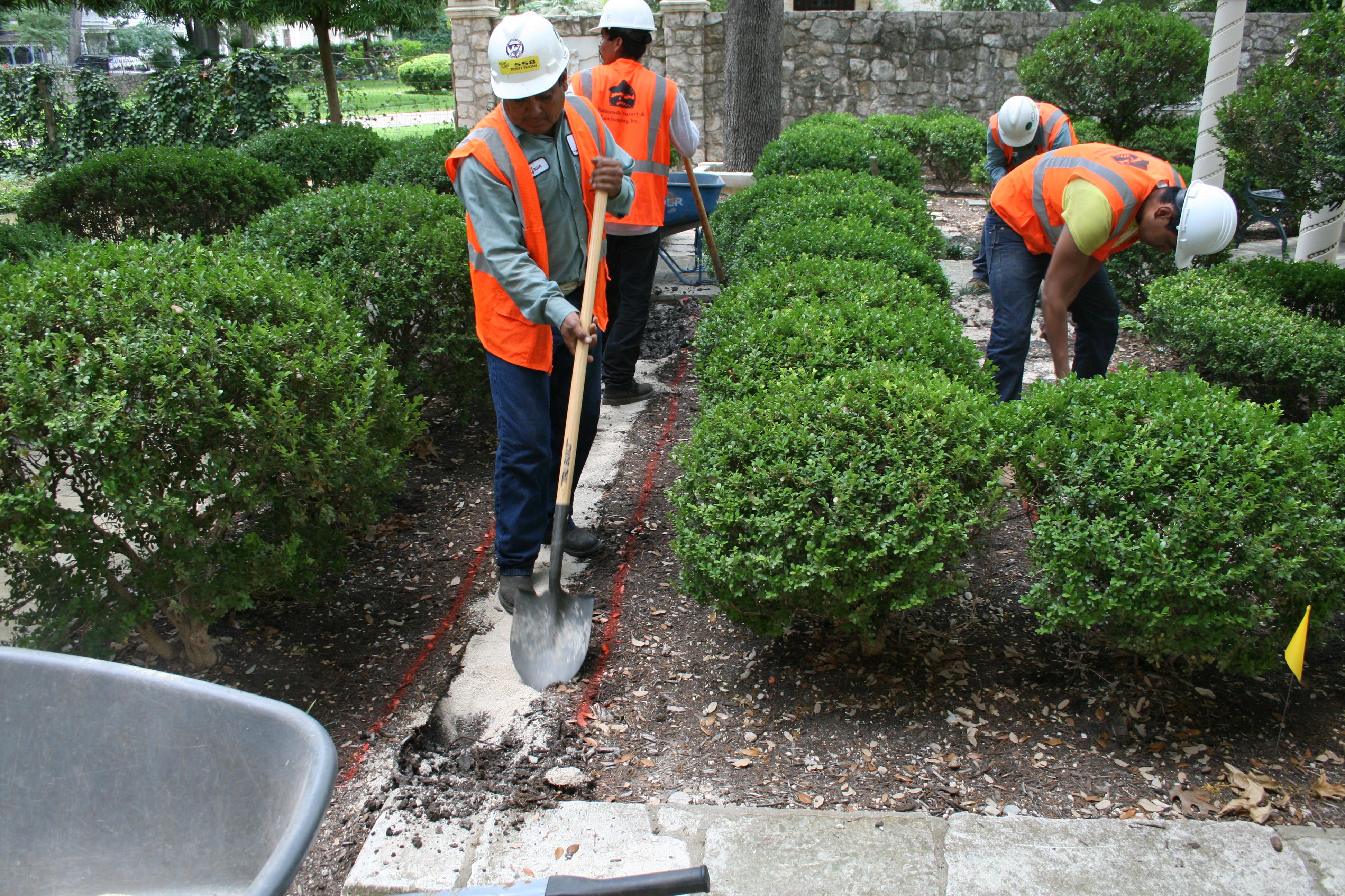 Landscape renovation pics 2012 114 for Landscape renovations
